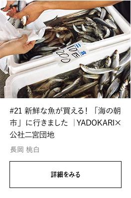 #21 新鮮な魚が買える!「海の朝市」に行きました|YADOKARI✕公社二宮団地
