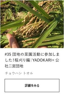 #35 団地の菜園活動に参加しました!稲刈り編|YADOKARI×公社二宮団地