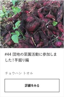 #44 団地の菜園活動に参加しました!芋掘り編 |YADOKARI×公社二宮団地